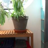 impregno holz impr gnierung impr gniermittel impr gnierspray carport balken teak ebay. Black Bedroom Furniture Sets. Home Design Ideas